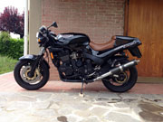 Triumph Speed Triple and Speed Triple R Spy Story